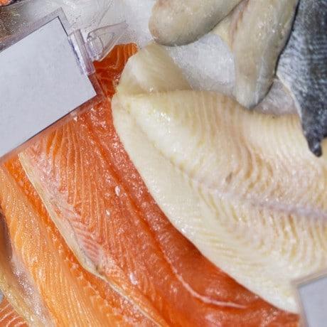 Fresh Fish Buying Guide