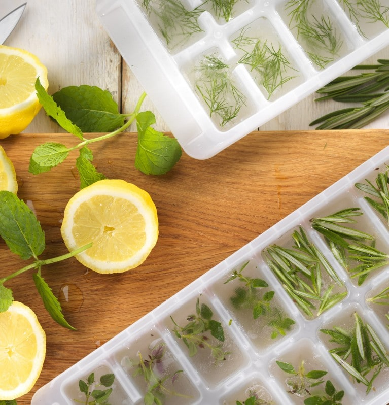 Chopped herbs with water in ice cube trays